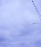 VS 880 Squadron_16